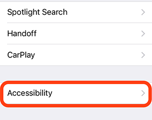 accessibility screenshot